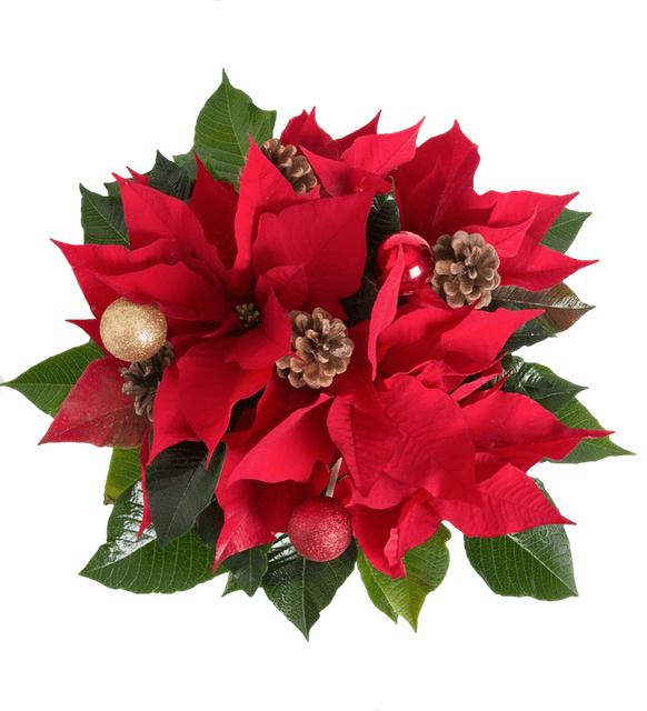 Доставка на Цветя & Букети & Подаръци до посочен от Вас адрес. Винаги навреме.