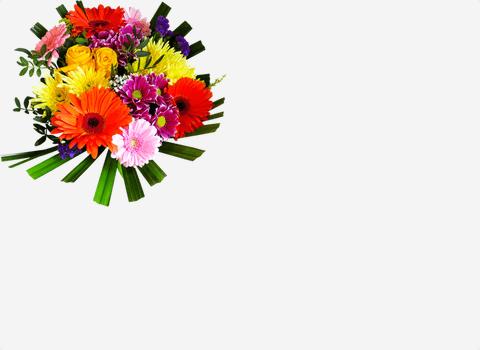 Cvete4U | Онлайн магазин за цветя и букети