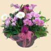 Кошница с розови и бели хризантеми, бели гербери, кали и зеленина, декорирана с нежна розова панделка.