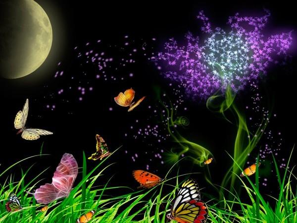 Астрологията обхваща много области от живота и дори може да ви каже кои цветя трябва да съхранявате у дома.