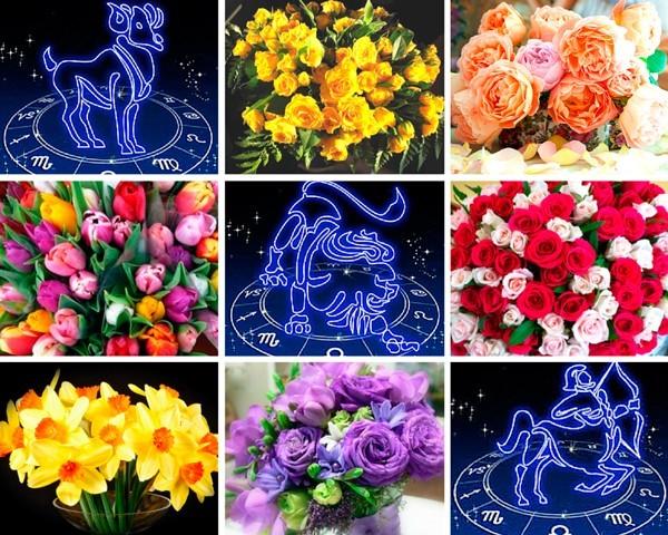 Според астролозите цветята имат силна енергия и са в състояние да повлияят на живота ни.