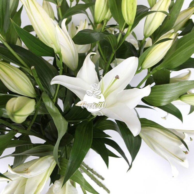 Букет Бяла красавица