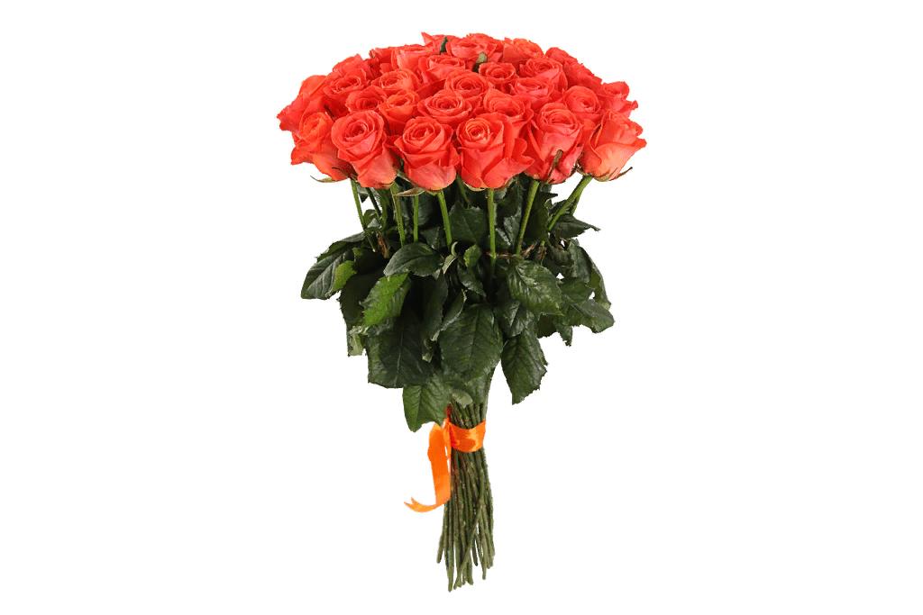 Какви цветя да подарите на 8-ми март?