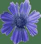 Cvete4U - Избери букет с любимото и цвете